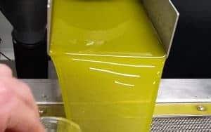 Oligri Griechisches BIO Olivenöl